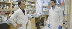 Drs. Joseph Scandura and Ghaith Abu-Zeinah